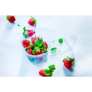 fresas envasadas en cesta de plástico